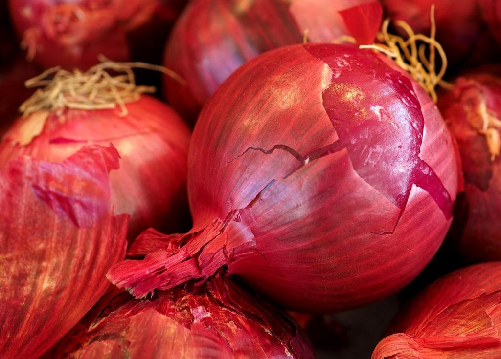 graines-oignon-rouge