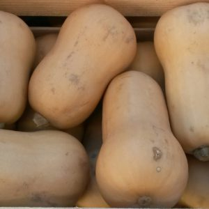 butternut courge