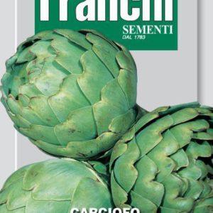 carciofo green globe