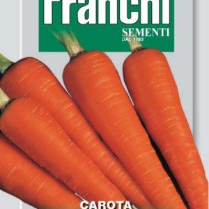 carotte chantenay