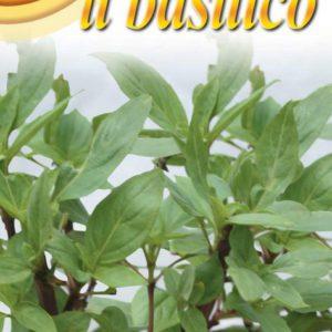 basilic thai