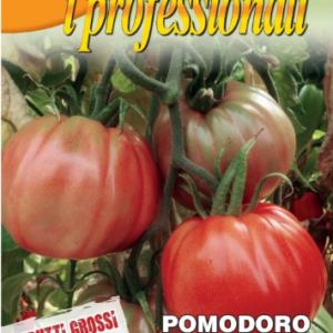 tomaet portuguaise