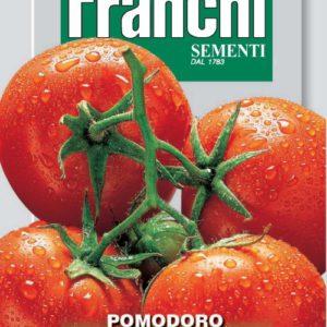tomate saint tpierre