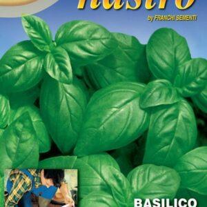 tapis graines basilic