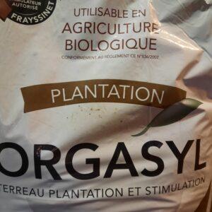 orgasyl